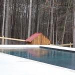 Pet Pool